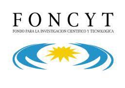 EVALUACIONES DOCENCIA E INVESTIGACIÓN FONCYT